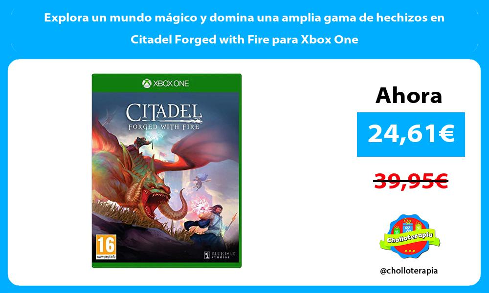 Explora un mundo mágico y domina una amplia gama de hechizos en Citadel Forged with Fire para Xbox One