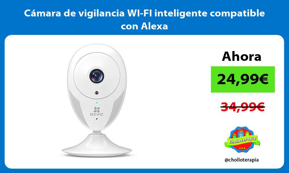 Cámara de vigilancia WI FI inteligente compatible con Alexa