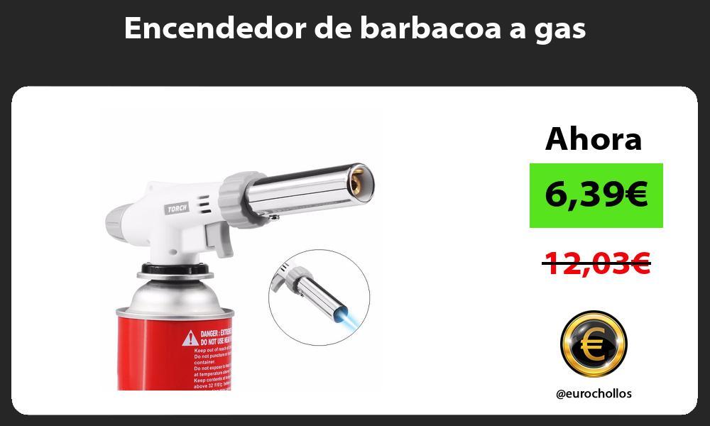 Encendedor de barbacoa a gas