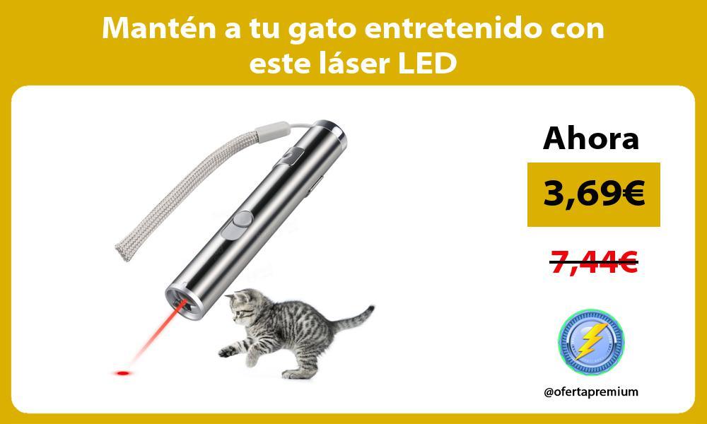 Mantén a tu gato entretenido con este láser LED