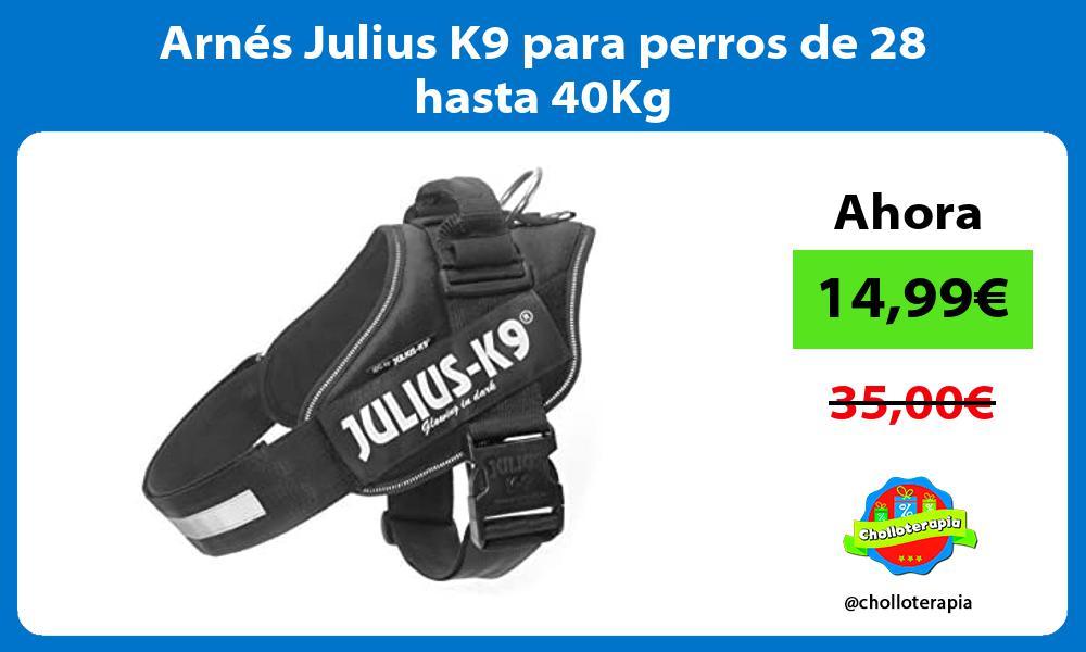 Arnés Julius K9 para perros de 28 hasta 40Kg