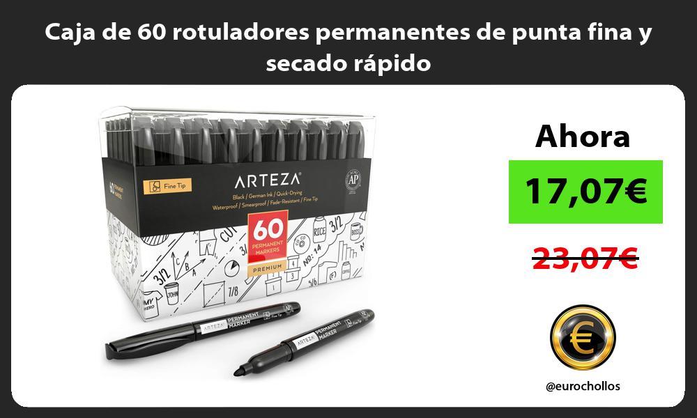 Caja de 60 rotuladores permanentes de punta fina y secado rápido