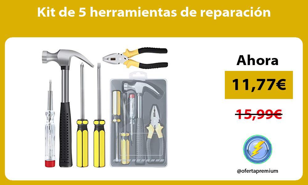 Kit de 5 herramientas de reparación
