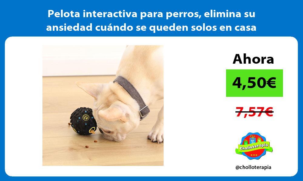 Pelota interactiva para perros elimina su ansiedad cuándo se queden solos en casa