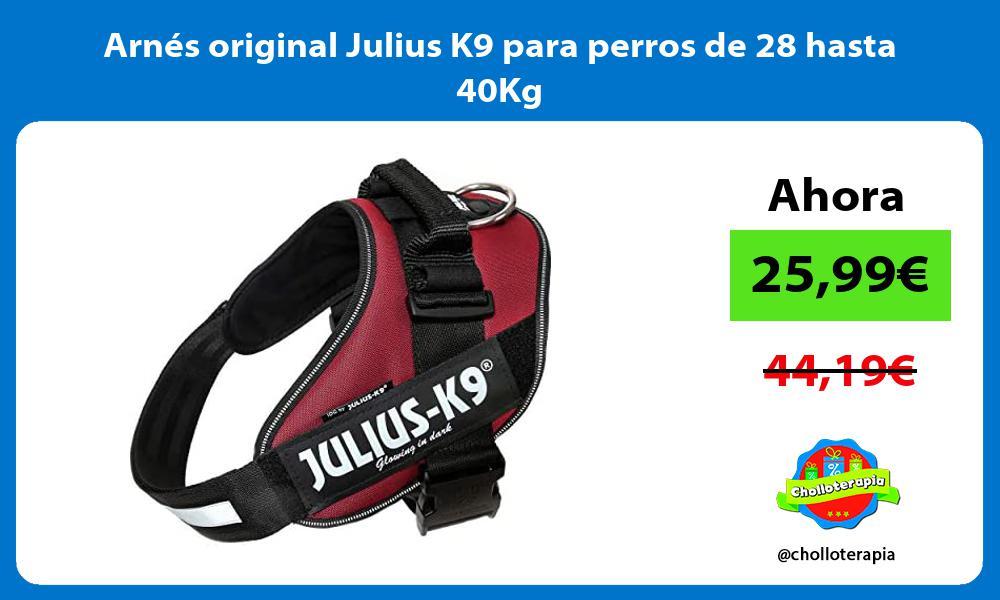 Arnés original Julius K9 para perros de 28 hasta 40Kg