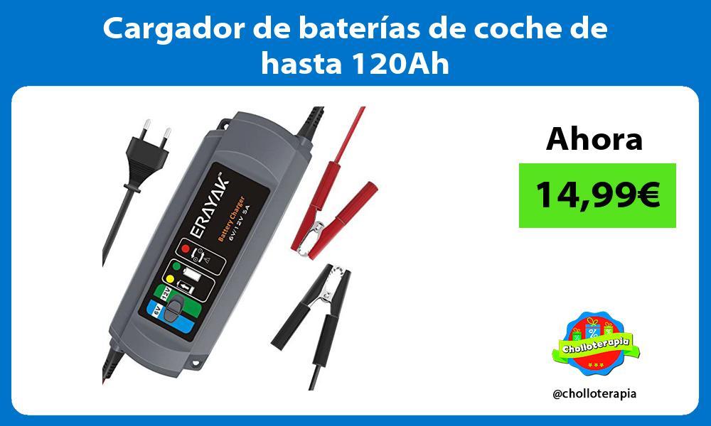 Cargador de baterías de coche de hasta 120Ah
