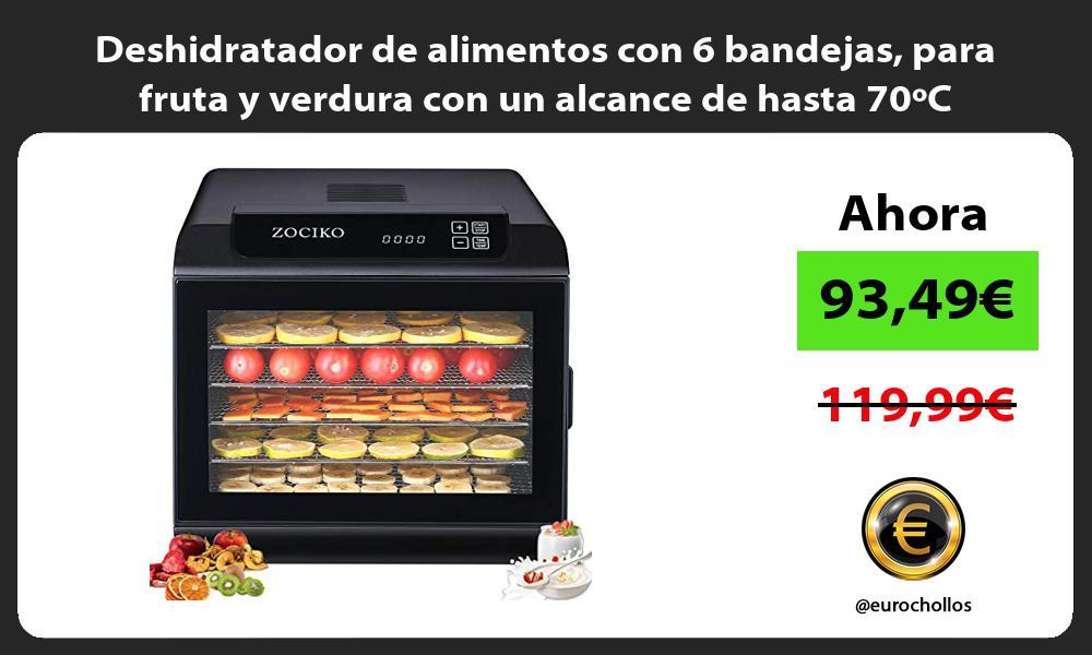 Deshidratador de alimentos con 6 bandejas para fruta y verdura con un alcance de hasta 70ºC