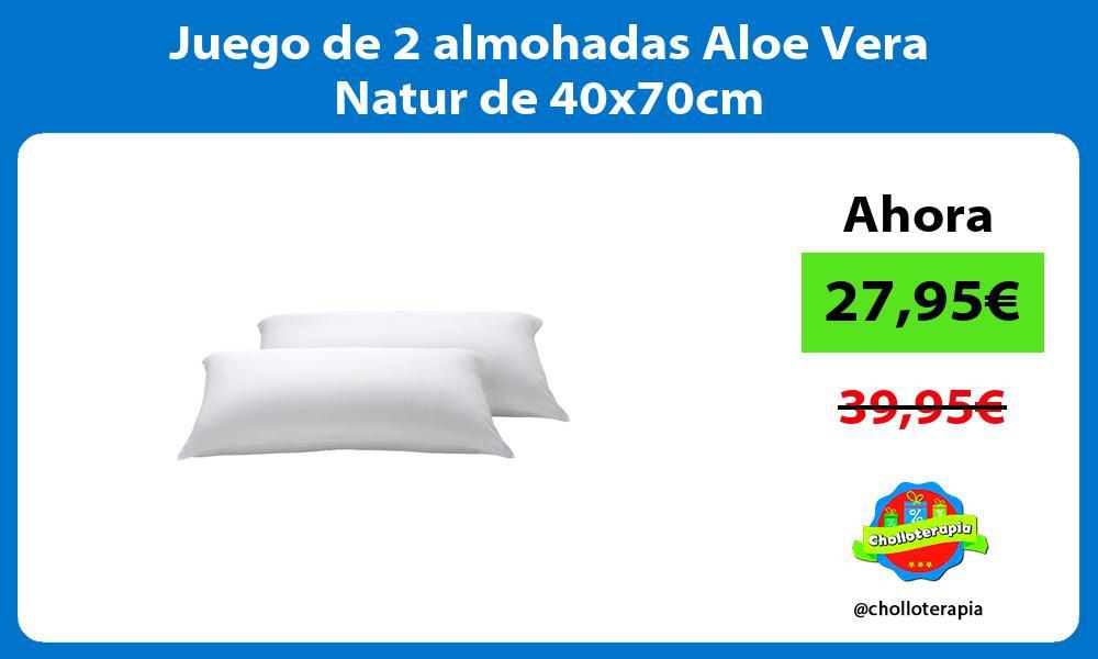 Juego de 2 almohadas Aloe Vera Natur de 40x70cm