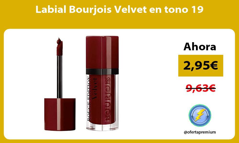 Labial Bourjois Velvet en tono 19