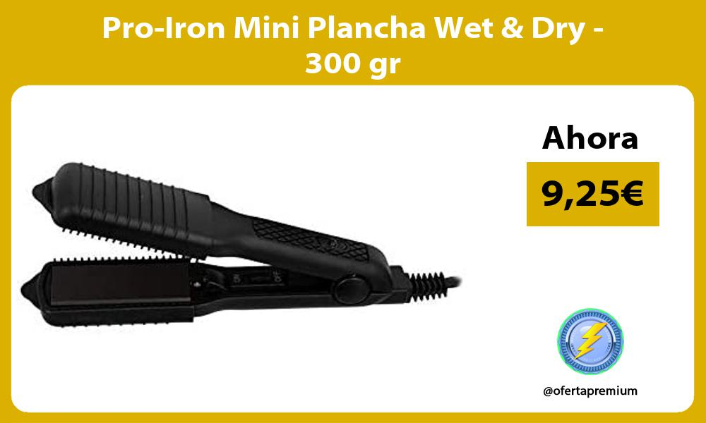 Pro Iron Mini Plancha Wet Dry 300 gr