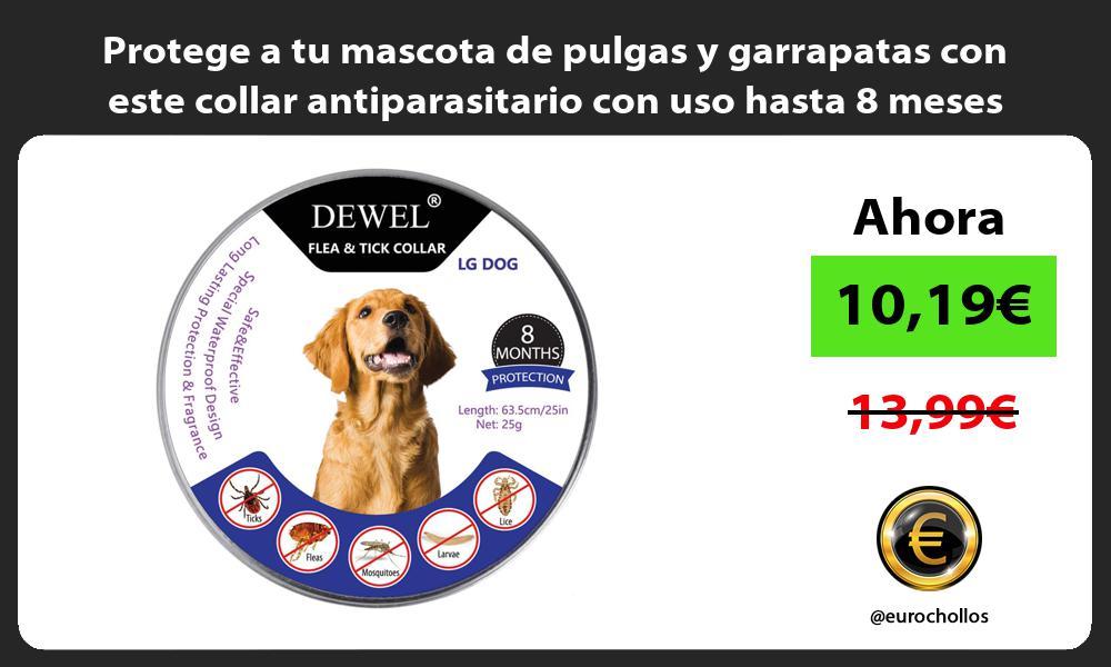 Protege a tu mascota de pulgas y garrapatas con este collar antiparasitario con uso hasta 8 meses