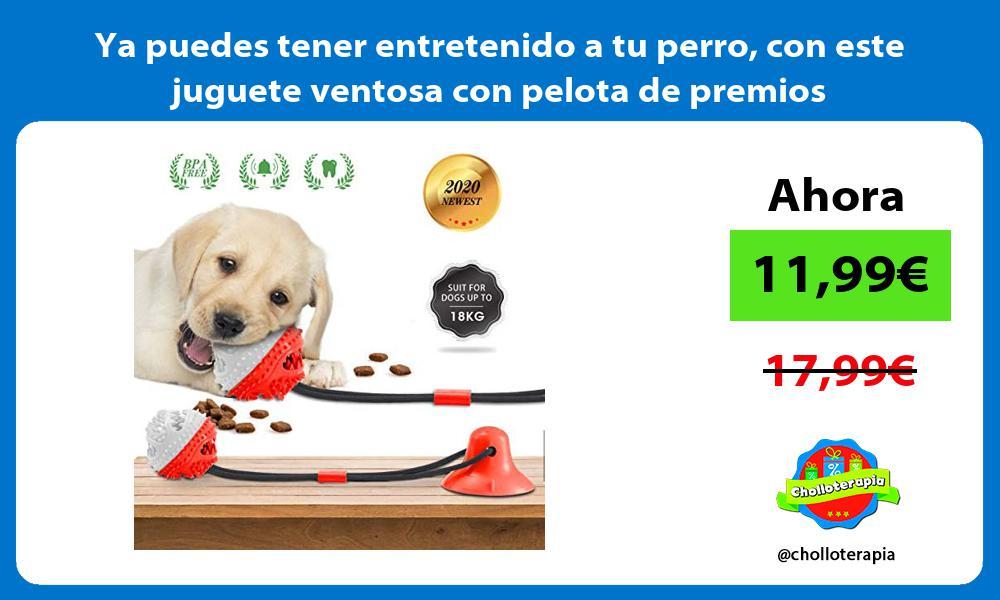Ya puedes tener entretenido a tu perro con este juguete ventosa con pelota de premios