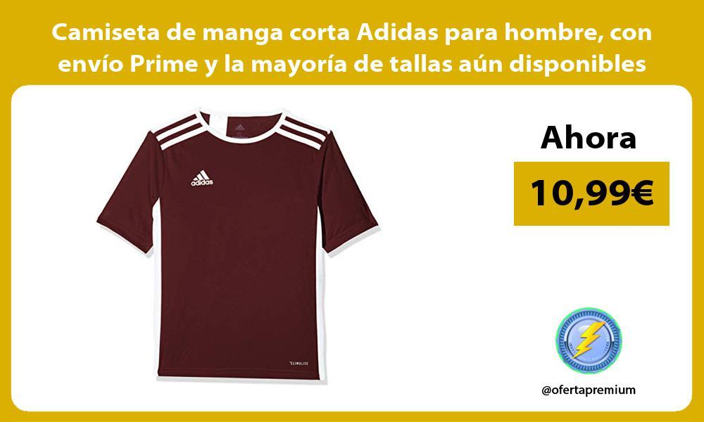 Camiseta de manga corta Adidas para hombre con envío Prime y la mayoría de tallas aún disponibles