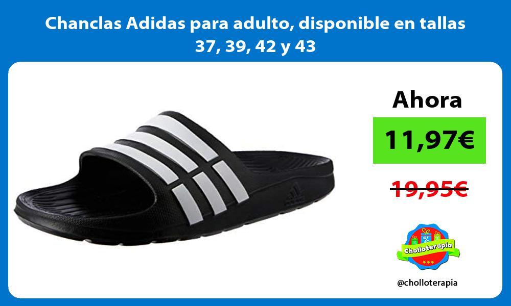 Chanclas Adidas para adulto disponible en tallas 37 39 42 y 43