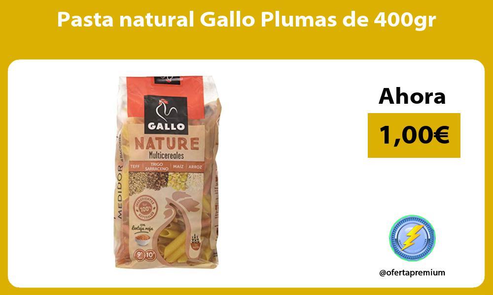Pasta natural Gallo Plumas de 400gr