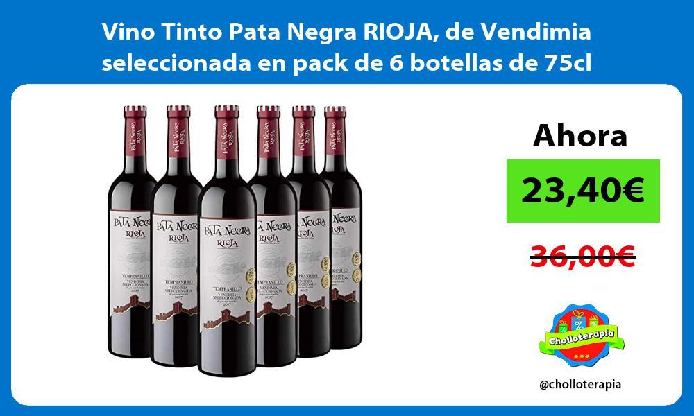 Vino Tinto Pata Negra RIOJA de Vendimia seleccionada en pack de 6 botellas de 75cl