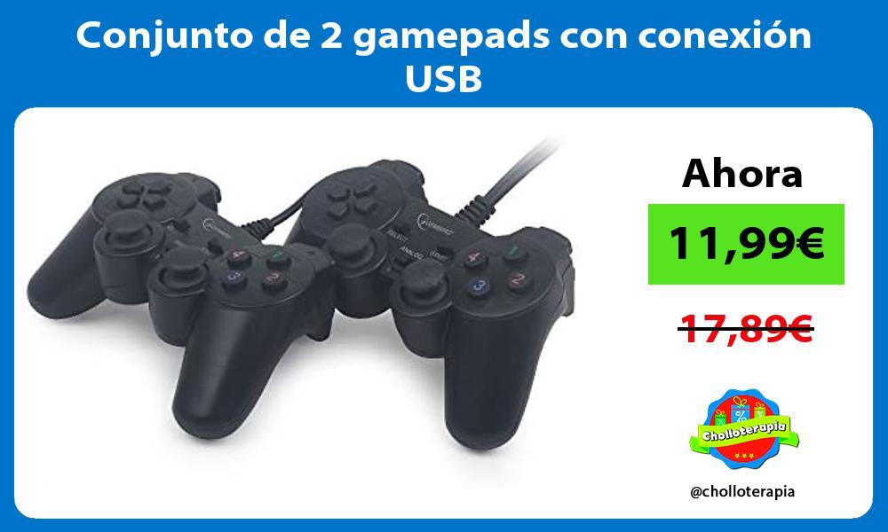 Conjunto de 2 gamepads con conexión USB