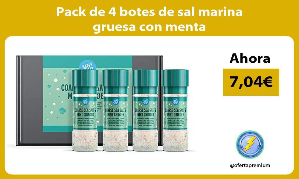 Pack de 4 botes de sal marina gruesa con menta