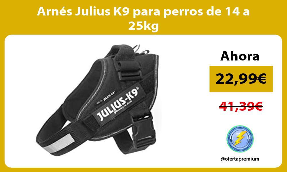 Arnés Julius K9 para perros de 14 a 25kg