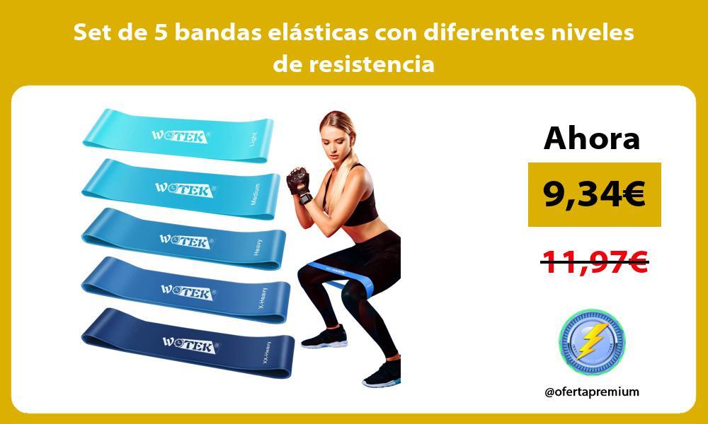 Set de 5 bandas elásticas con diferentes niveles de resistencia