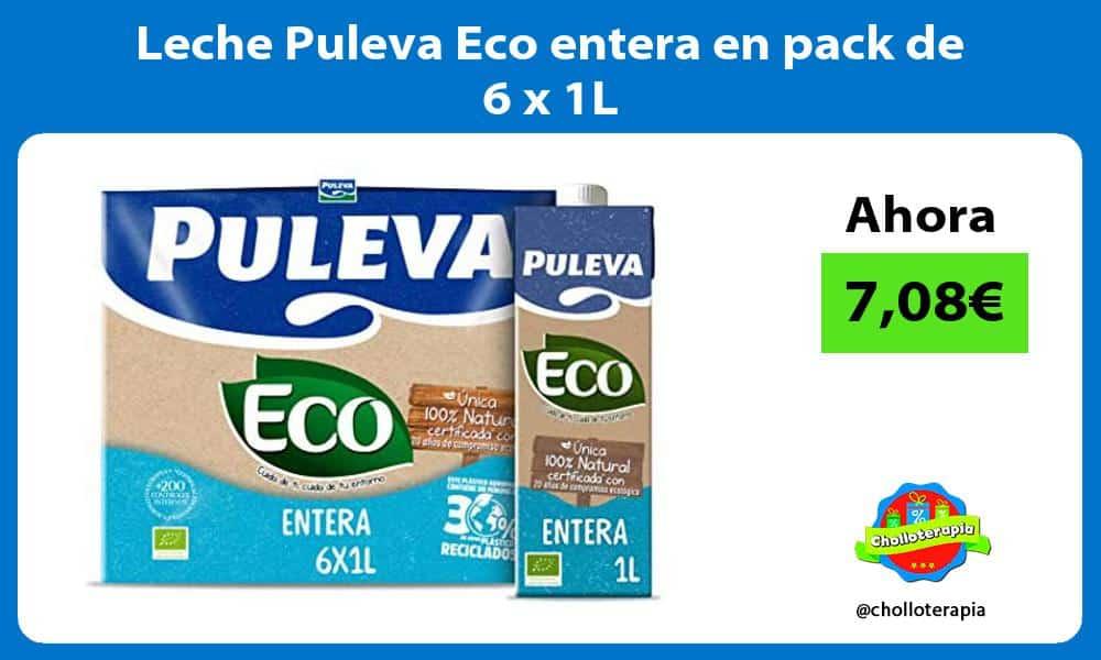 Leche Puleva Eco entera en pack de 6 x 1L