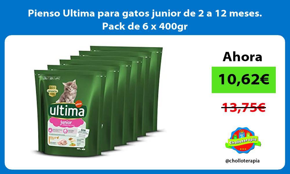 Pienso Ultima para gatos junior de 2 a 12 meses Pack de 6 x 400gr