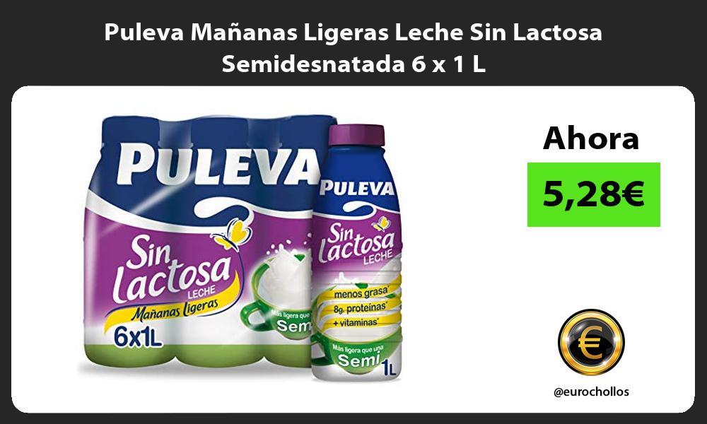 Puleva Mañanas Ligeras Leche Sin Lactosa Semidesnatada 6 x 1 L