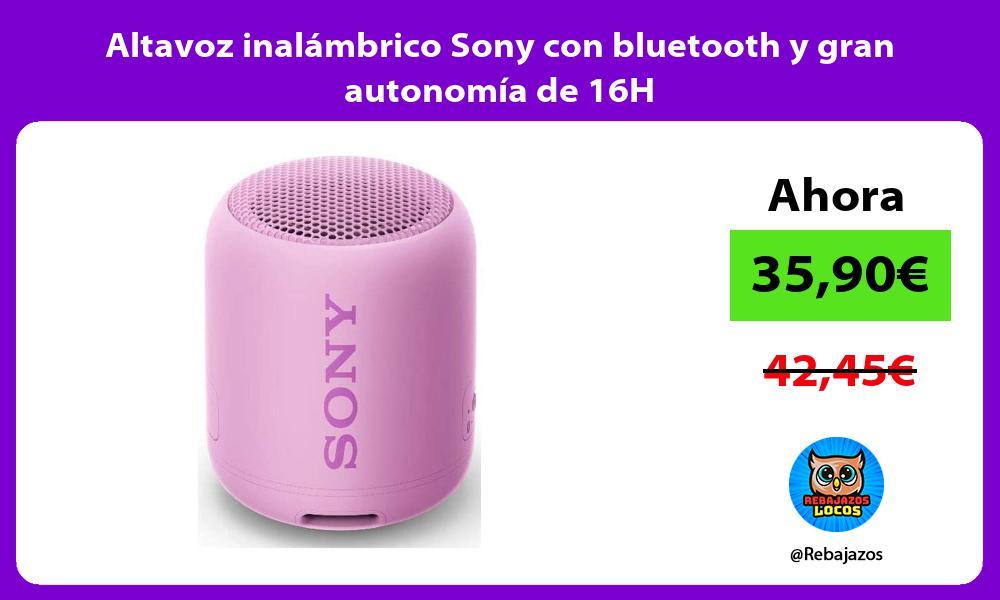 Altavoz inalambrico Sony con bluetooth y gran autonomia de 16H