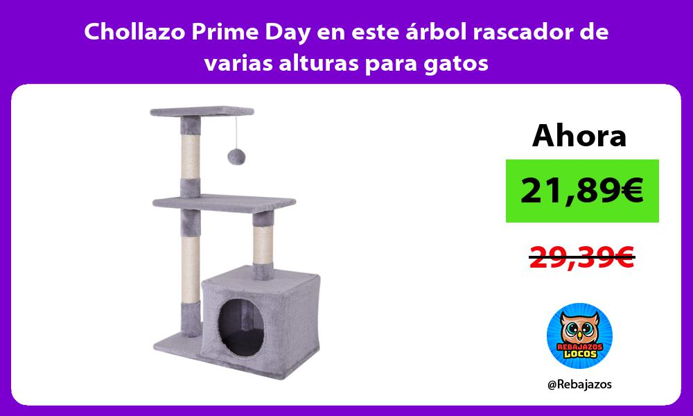 Chollazo Prime Day en este arbol rascador de varias alturas para gatos