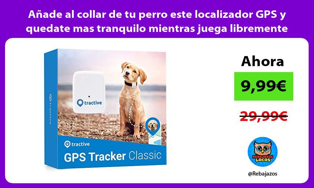 Anade al collar de tu perro este localizador GPS y quedate mas tranquilo mientras juega libremente
