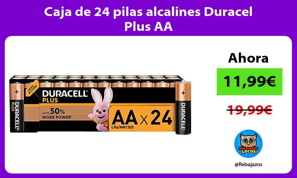 Caja de 24 pilas alcalines Duracel Plus AA