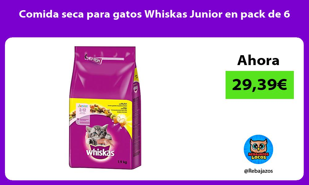 Comida seca para gatos Whiskas Junior en pack de 6