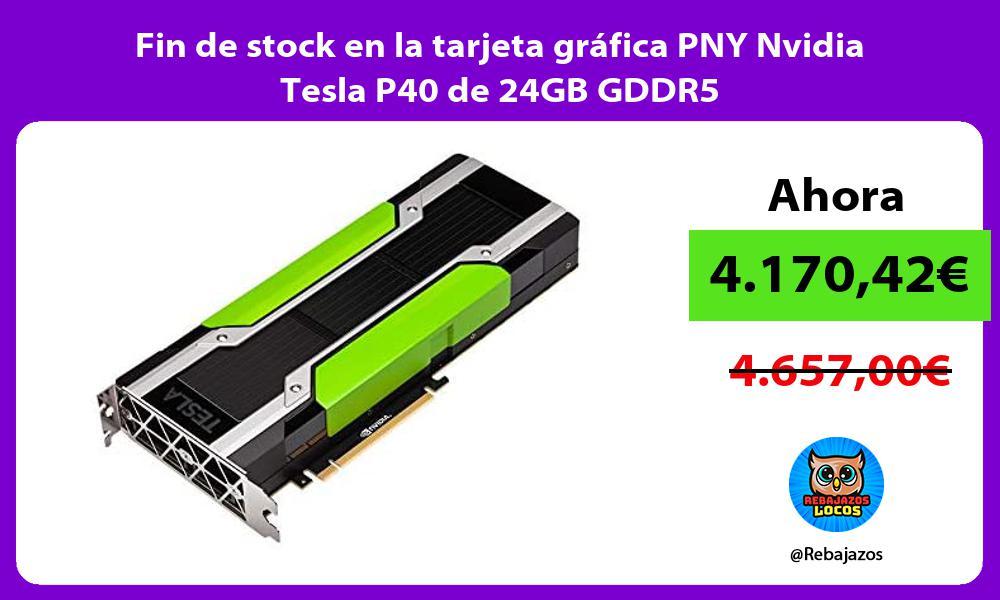 Fin de stock en la tarjeta grafica PNY Nvidia Tesla P40 de 24GB GDDR5