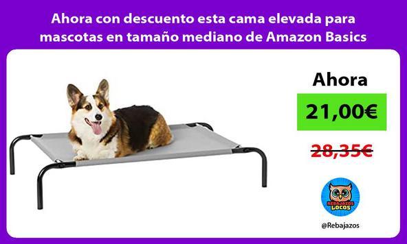 Ahora con descuento esta cama elevada para mascotas en tamaño mediano de Amazon Basics