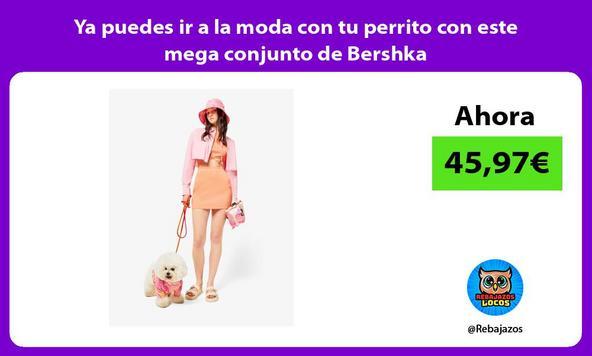 Ya puedes ir a la moda con tu perrito con este mega conjunto de Bershka
