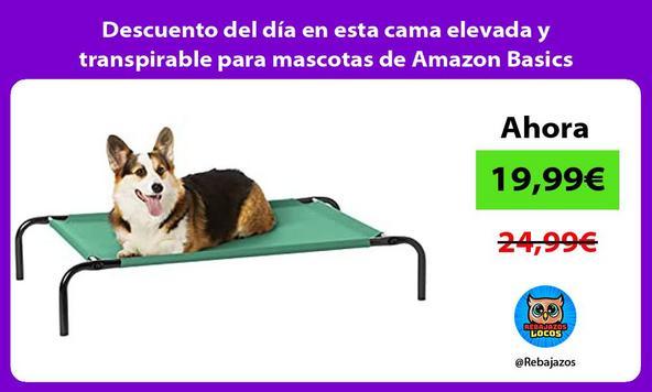 Descuento del día en esta cama elevada y transpirable para mascotas de Amazon Basics