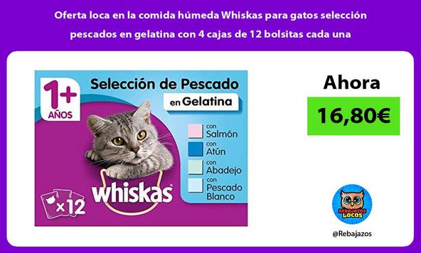 Oferta loca en la comida húmeda Whiskas para gatos selección pescados en gelatina con 4 cajas de 12 bolsitas cada una